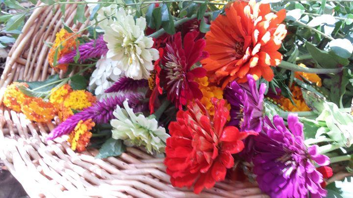 basket full of beauty