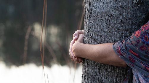 my arms hugging the tree.jpg