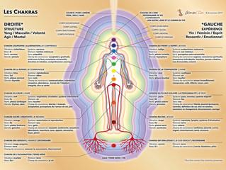 Armoni'Zen: création planche des chakras