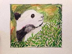 Encre de Chine et crayon couleur