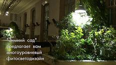 """""""Зимний сад"""" предлагает многоуровневый фитосветодизайн"""