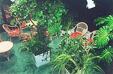Виды зимних садов, тематические зимние сады