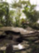 Фитодизайн и вода, водопад с растениями в зимнем саду, водоем в интерьере с растениями