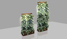 Мобильные светящиеся стены из комнатного винограда высотой 2 или 3 метра