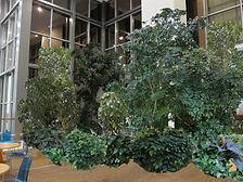 Тропикариум - остров дикой природы с концентрацией тропических деревьев до 6 метров высотой