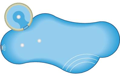 Bo-Derek-Pool-Design-with-spa.png
