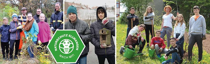 Naturentdecker in Aktion: Schüler der Eugen-Bolz Realschule, der Mittelhof- und der Schönen Graben Schule lernen, wie man schon mit kleinen Maßnahmen Gutes tun kann für Biene, Star und Co.