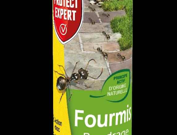 Anti Fourmis 250g