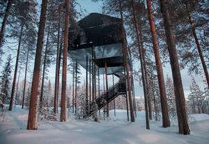 Estilosas casas em árvores
