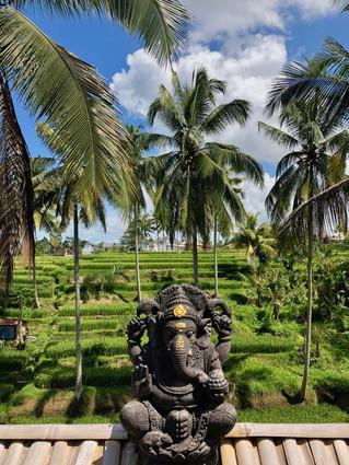 """L'Île des Dieux : """"Chère Mama Bali"""""""