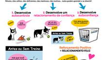 O que significa treinar cães por Reforçamento Positivo?