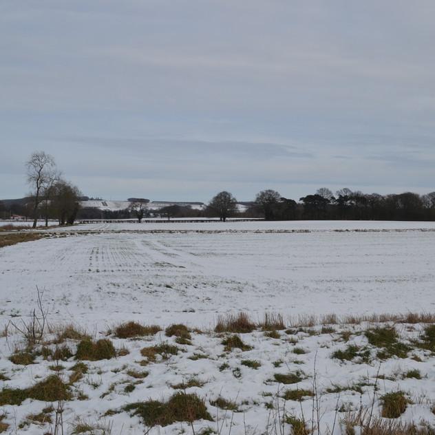 Near Woldgate School
