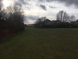 Broadmanor Park