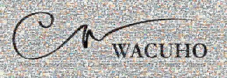 Mosaic of WACUHO.png