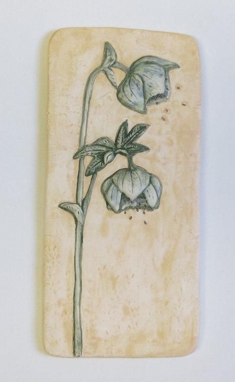 Hellebore ceramic wall plaque