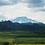 Thumbnail: 62% single origin - tree to bar from Cameroon