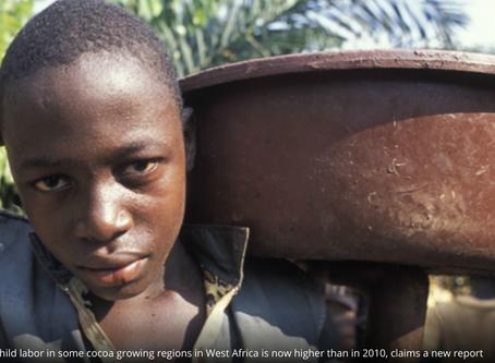 Kinderslavernij in chocolade met >30% toegenomen!