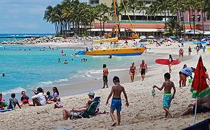 Hawaii politico.jpeg