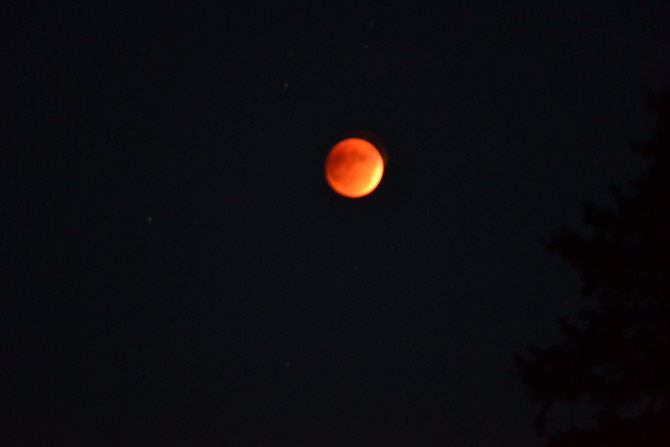The blood moon eclipse from the ranch.