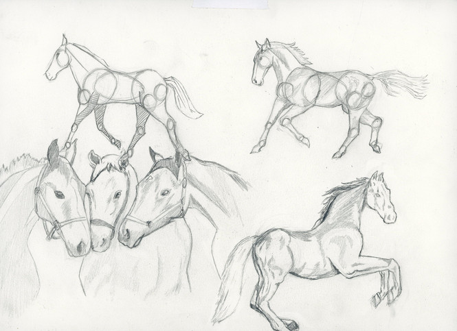 sketch060.jpg