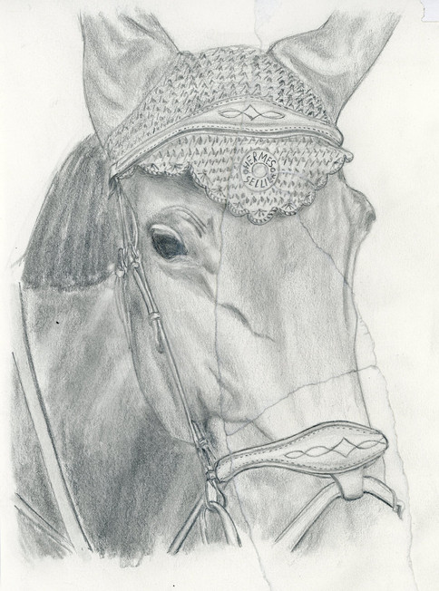 sketch061.jpg