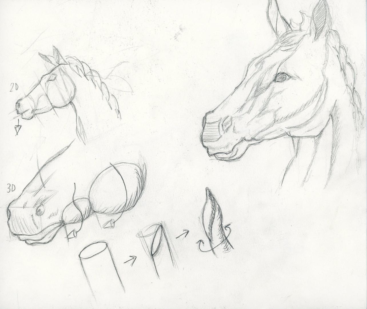 sketch067.jpg