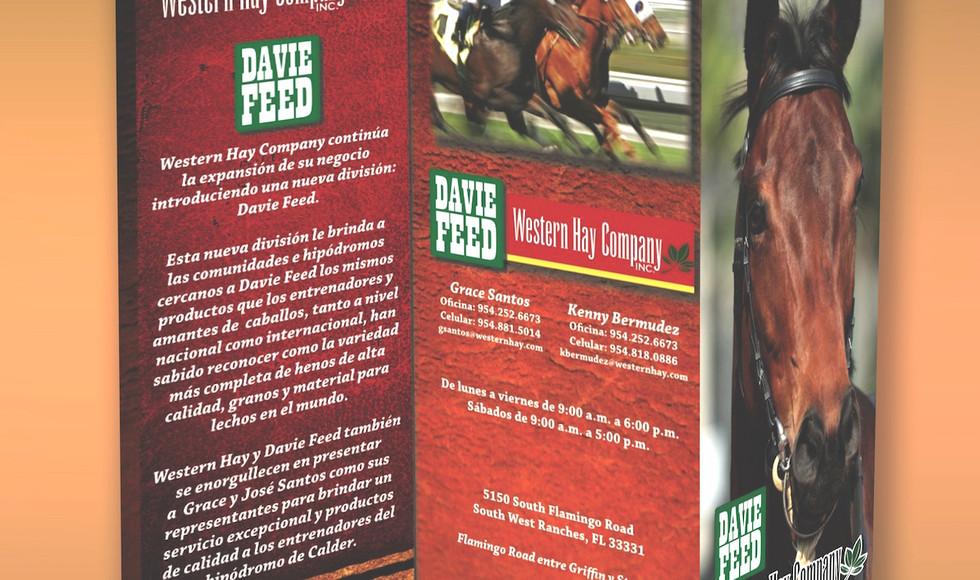 DAVIE3D TRI.jpg