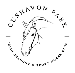 cushavon park logo.png