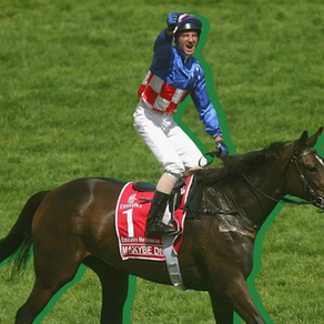 The race that divides a nation: What happens to the horses after the Melbourne Cup?