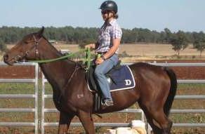 Horse raced weeks before teen Sarah Waugh's death