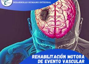 Rehabilitación motora de evento vascular cerebral y EMT