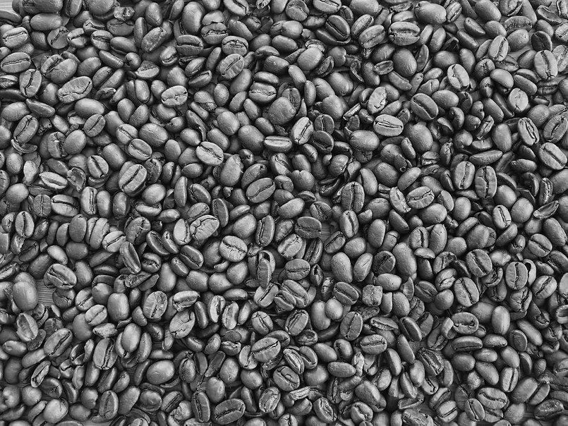 Kaffebohnen-sw.jpg