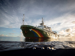 Greenpeace at 40: A Global Brand in Good Health?