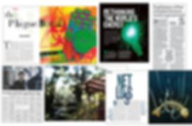 Samples of journalism | Wilson d Silva
