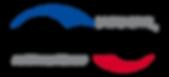 De_Luxe_Brands_Logo_dl.png