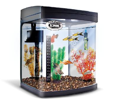 Kit equipado acuario rectangular negro con luz LED