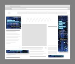 dnb-mdm-web-banner