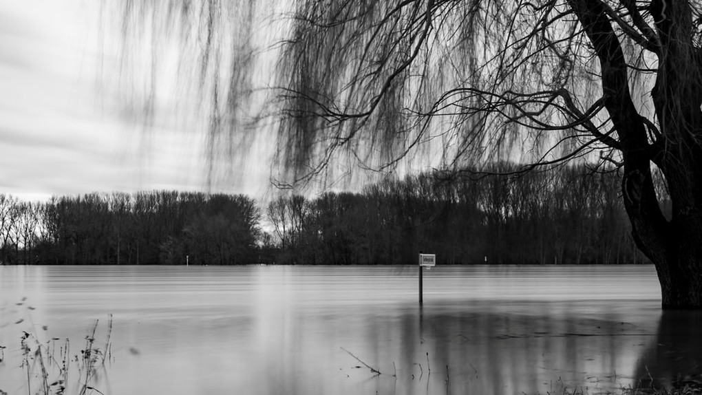 Foto: Sascha Ley