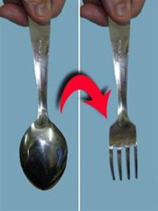 Spoon to Fork