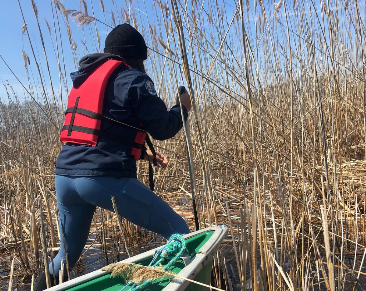 Checking water quality at Big Reed Pond