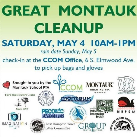 The Great Montauk Cleanup