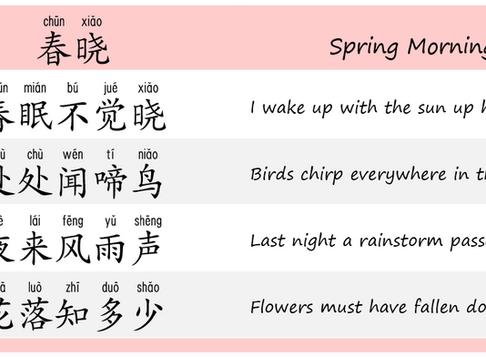 Chinese Poem Reading - Spring Morning