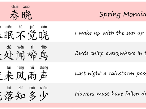 Chinese Poem Reading - Spring Morning