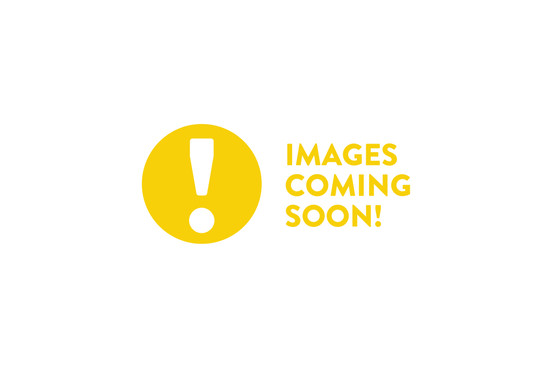 images-coming-04.jpg