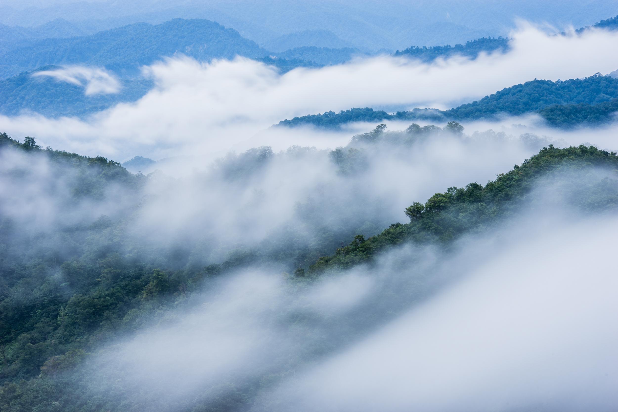 新潟県 枝折峠 雲海