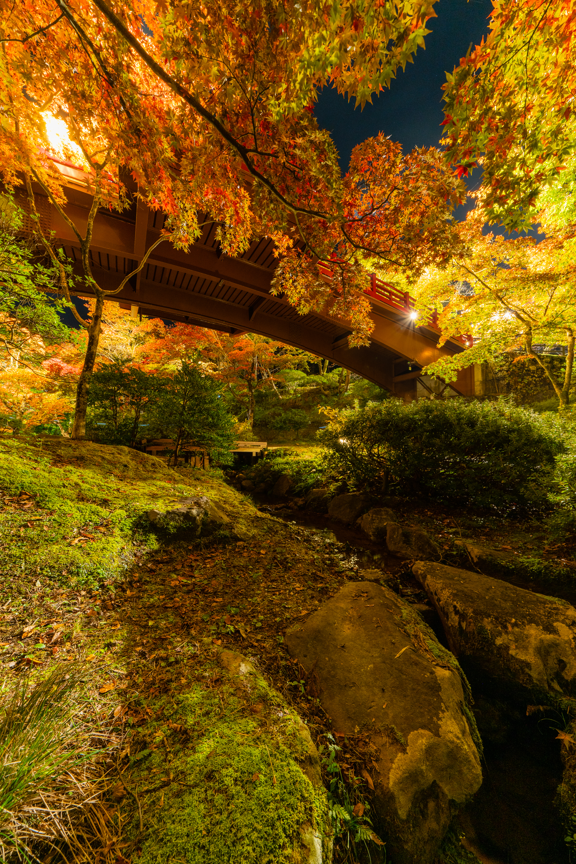 新潟県 弥彦公園