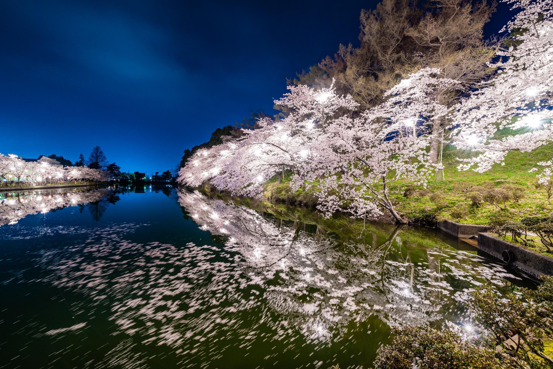 新潟県 高田公園