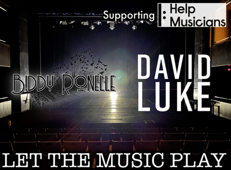 Let The Music Play - Raising Funds for Help Musicians by Biddy Ronelle & David Luke