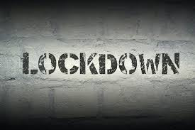 Bands In Lockdown Vol.40