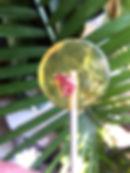 IMG_9366_edited.jpg